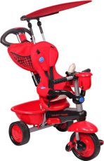 Велосипед для малыша Smart Trike Zoo Lady Bug